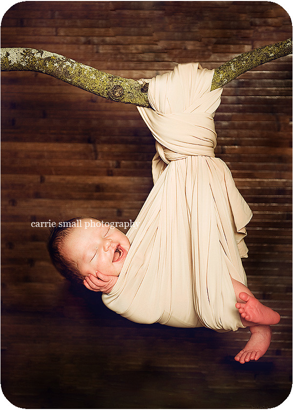 beautiful newborn hanging in a stork nest
