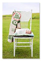 My daddy's in cotton. (Brandy Jaggers) Tags: boy baby naturallight indoor newborn nikkor50mmf14 nikond700