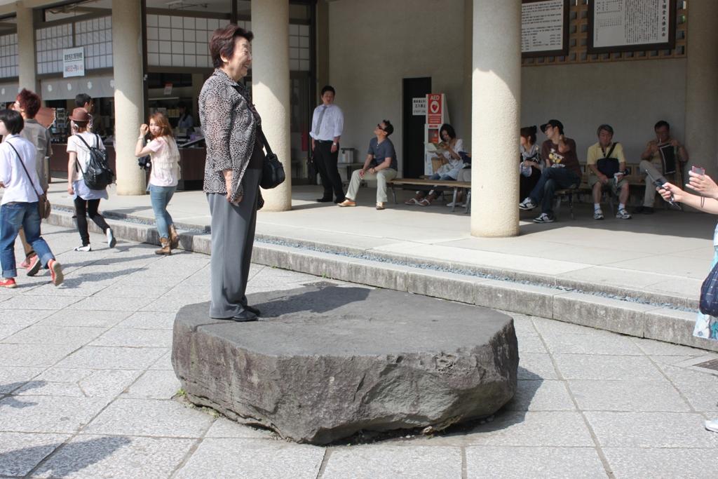 Hydrangeas - Exploring Hase, Kamakura part2 (12)