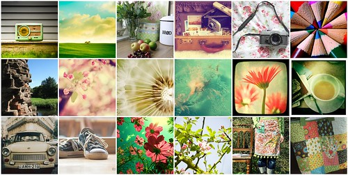 Flickr Favorites