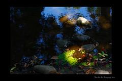 (Hsin Tai Liu) Tags: california park summer reflection nature water bar canon rebel 50mm stream 14 diamond sycamore end usm xs 1000d