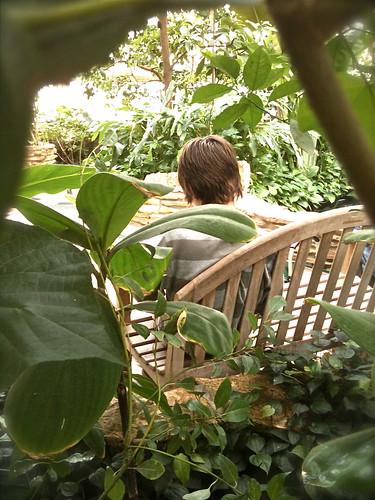 Conservatory :: 8