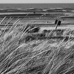 This Could Be Somewhere Else (Andrew Lockie) Tags: ocean people bw seascape weather square landscape seaside sand couple open space dunes tide dune norfolk wide northsea windswept stroll twopeople tidal hunstanton vast expanse seaair couplewalking thewash oldhunstnaton