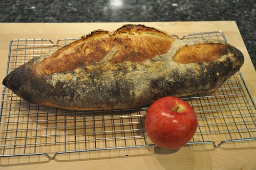 Baguette of Unusual Size!