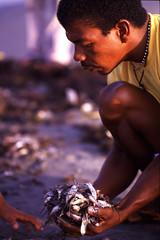 Pescadores (tonatiuh figueroa) Tags: pescadores