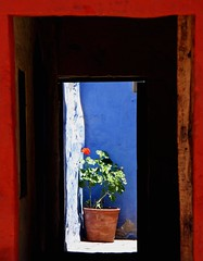 Red geranium through the doors... (Z Eduardo...) Tags: door blue red urban orange flower monument latinamerica southamerica wall architecture colours unesco worldheritagesite monastery geranium arequipa mosteiro santacatalina vallentineday platinumpeaceaward