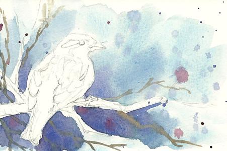 20110409_sparrow_step2