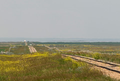 A Decade on the Prairies (Trevor Sokolan) Tags: gwr greatwestern sk saskatchewan prairie prairies cpr branchline branch canadian canada railway railroad railfan rail railfanning notekeu trains train trainspotting scenic