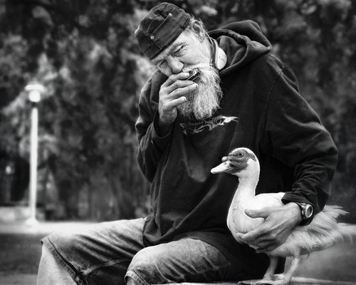man with duck, 20100621_33905-600x480