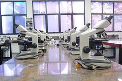 Unifran - Laboratrio de analises clnicas - Bancada com microscpios (Unifran - Universidade de Franca) Tags: laboratrio cursos valor analise funcionarios graduao clinicas psgraduao unifran universidadedefranca educaoadistancia