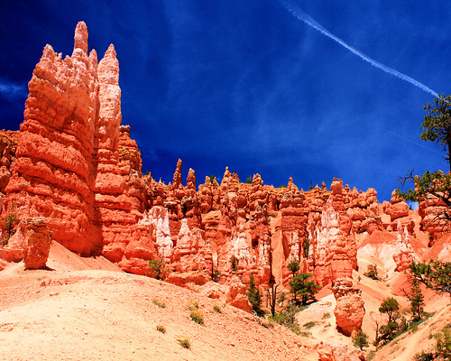 8x10 Bryce Canyon IMG_9538