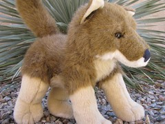 Myles the Coyote (trobertabq) Tags: coyote wild toy plush regional buildabear