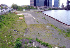 Passaic River Edge