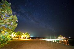 Starry Sky (nhilmy) Tags: sky night way island nikon long exposure angle wide resort explore galaxy nikkor maldives milky ultra cocopalm starfield explored d700 boduhithi 1424mmf28g Astrometrydotnet:status=failed Astrometrydotnet:id=alpha20100746517607