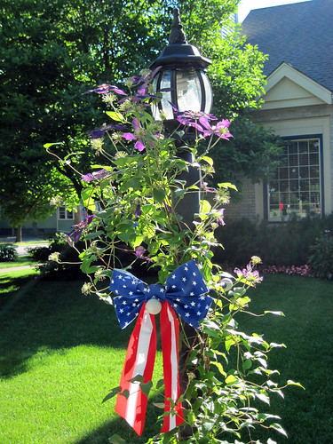 Our Town-Patriotic House 6