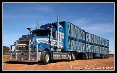 Thornhill Livestock (Tom O'Connor.) Tags: road up train truck canon lens eos waiting crossing nt alice south under twin australia down springs land trucks parked kit sa northern mack livestock triple gs trucking territory unload truckers immaculate thornhill superliner yorkeys bdouble 1000d