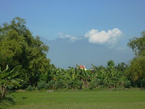 Java- Surabaya-Bromo (19)