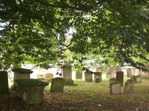 Sookie's Graveyard