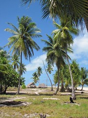 Biketawa: Tropical Paradise in Kiribati (tanwc) Tags: islands waves wwii lagoon beaches worldwar kiribati micronesia tarawa micronesian centralpacific gilbertislands betio bairiki biretawa