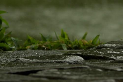 Waterdrops on stones