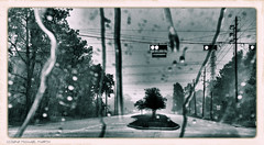 Huffmeister in a downpour (pinemikey) Tags: storm wet monochrome rain texas cypress downpour