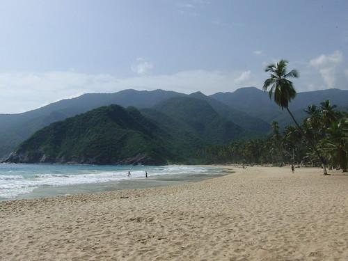 playa grande de puerto colombia, choroní