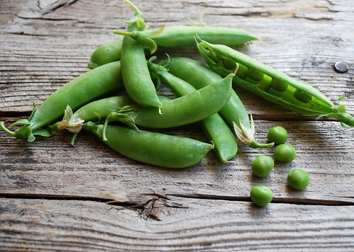 Sugr snap pea bunch1