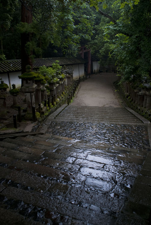 rain and stone stairs