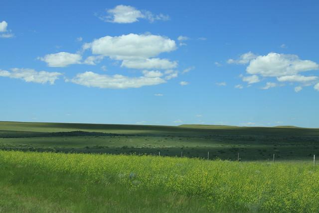 Prairie shot