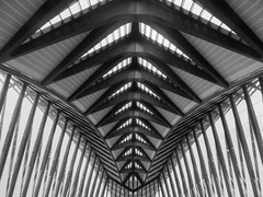 Lyon Saint Exupery TGV Train Station I (Daniel Schwabe) Tags: bw abstract france station train lyon gare geometry trainstation calatrava tgv saintexupery