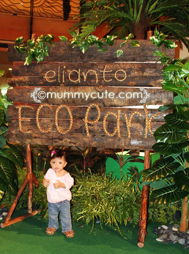 4798273484 fb9a46c989 b Ellianto Eco Park