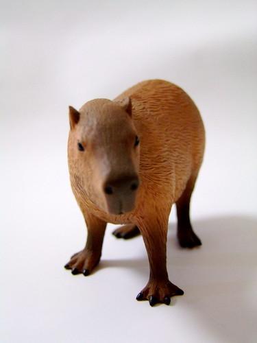 ドキドキどうぶつシリーズ カピバラ(立ち)/Dokidoki Animal Series Capybara