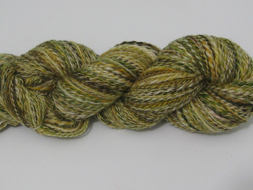 forest superwash merino