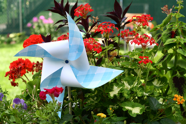 Homemade Pinwheel