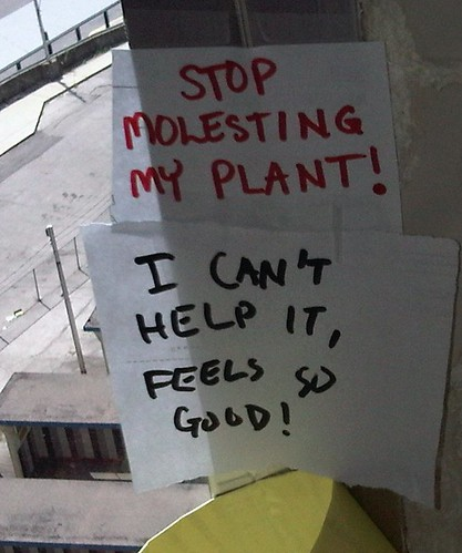 Stop molesting my plant! (I can't help it, it feels so good!)