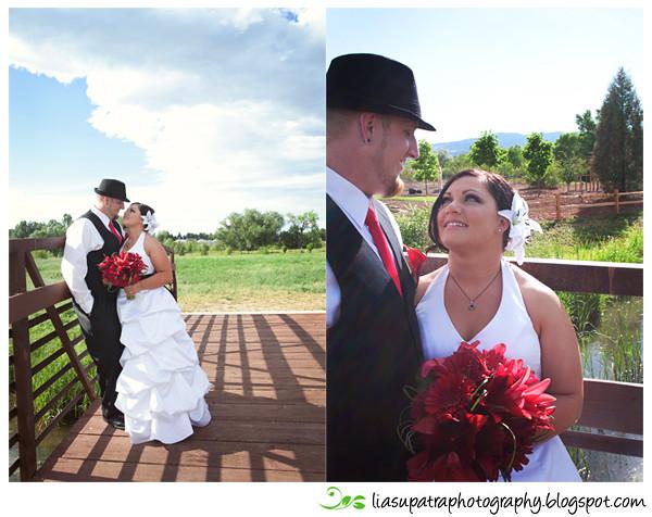 CT Wedding blg15