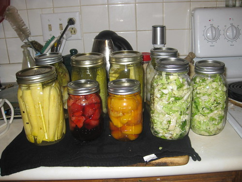 Canned goods 2010 07 20