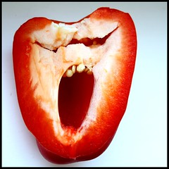 Skrik ( Karo the Rlchen ) Tags: red food rot square rouge pepper teeth yawn paprika thescream poivron dents zhne skrik ghnen derschrei explored 3wcwinner lecri deschreeuw 3wcteilnehmer 3000views25thsept