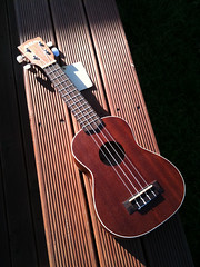 Little Lucille (catspyjamasnz) Tags: ukulele kala