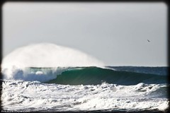 Set Wave (Mikala Wilbow) Tags: surf wave surfphotographer mikalawilbow mikalawilbowcom northernbeaqches curlcur