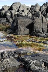 Isafjardarjup 01 (*maya*) Tags: nature landscape island iceland seaside mare shore fjords westfjords scogliera islanda isafjordur arcticsea mareartico alftafjordur fiordioccidentali isafjardarjup