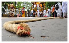 DSC_4154c (Sayantan Sarkar - The Glamor Factory) Tags: festivalindianfestivalrathchariotfestivalpeoplecolorfacesexpressionsdevoteesdevotion iskconkolkata