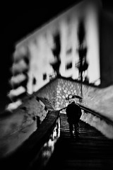 The ascend (_Massimo_) Tags: blackandwhite bw italy lensbaby stairs liguria steps genoa genova lensbabies biancoenero scalinata massimostrazzeri borgoincrociati ghesemmu ziomamo