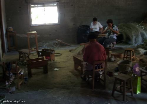 Local de trabalho das cesteiras