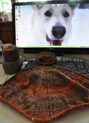 Larix shawl 30%