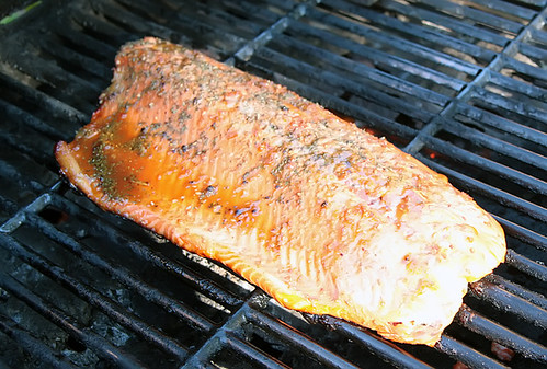 Grilled Teriockeye Salmon 6