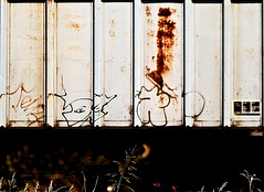 Jaber DTC (mightyquinninwky) Tags: railroad overgrown yard train graffiti weeds streak character tag graf profile tracks railway tags tagged bust railcar rails graff graphiti hopper freight gravel trainyard dtc kyt trainart paintedtrain jaber freightyard fr8 railart hotsummerday moniker freightcar taggedtrain paintedsteel graphitit csxtrainyard paintedhopper howellfreightyard taggedhopper paintedrailcar paintedfreight taggedrailcar taggedfreight 11223344556677 carfireonflickr charactersformyspacestation