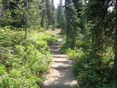 Crystal Lakes trail stairs.