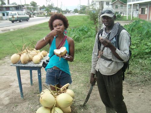 Coconut Water Diary at Surinam Border 3