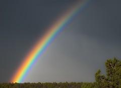 RainbowHDR